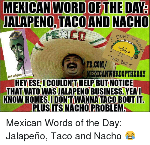 Jalapeno Business: MEXICAN WORD OF THE DAY  JALAPENO, TACO AND NACHO  DONT  TAco BouT T  MERICANWORDOFTHEDAY  HEY ESEICOULDNTHELP BUT NOTICE  -THAT VATO WAS JALAPENO BUSINESS. YEA I  KNOW HOMESI DON'T WANNA TACO BOUTIT.  PLUS ITS NACHO PROBLEM Mexican Words of the Day: Jalapeño, Taco and Nacho 😂