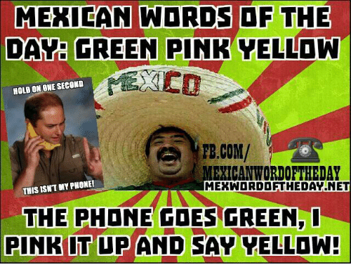 Mexican Word: MEXICAN WORDS OF THE  DAY: GREEN PINK YELLOW  HOLD ON ONE SECOND  FB.COM/  MEXICAN WORIOFTHEDAY  THIS ISNT MY PHONE!  MEKWOORDOETHEDAT NET  THE PHONE COES GREEN,  PINK IT UP AND SAY VELLDW!
