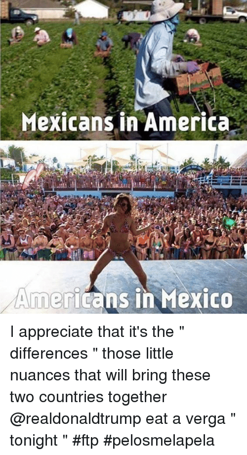 "Americanness: Mexicans in America  Americans in Mexico I appreciate that it's the "" differences "" those little nuances that will bring these two countries together @realdonaldtrump eat a verga "" tonight "" #ftp #pelosmelapela"