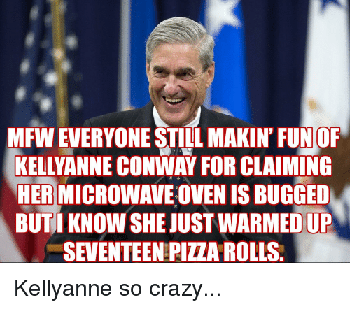 Conway, Crazy, and Mfw: MFW EVERYONE STILL MAKIN' FUNOF  KELLYANNE CONWAY FOR CLAIMING  HER MICROWAVE OVEN IS BUGGED  BUTI KNOW SHE JUST WARMED UP  SEVENTEEN PIZZA ROLLS