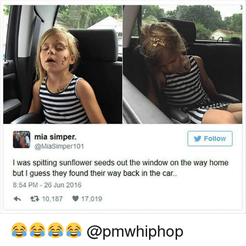 Sunflowering: mia simper.  Follow  @Miasimper 101  l was spitting sunflower seeds out the window on the way home  but I guess they found their way back in the car.  8:54 PM 26 Jun 2016  10,187  17.019 😂😂😂😂 @pmwhiphop