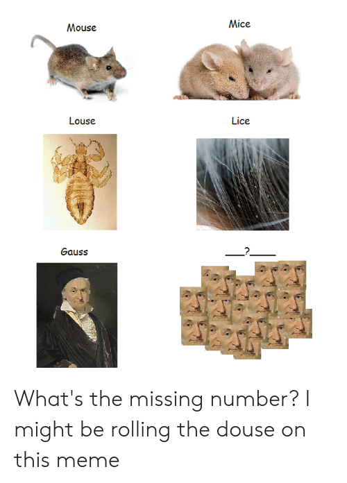 douse: Mice  Mouse  Louse  Lice  Gauss What's the missing number? I might be rolling the douse on this meme