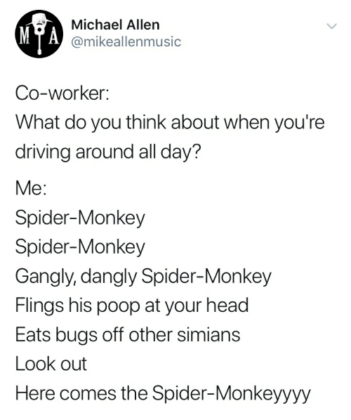 spider monkey: Michael Allen  MTA @mikeallenmusic  Co-worker:  What do you think about when you're  driving around all day?  Me:  Spider-Monkey  Spider-Monkey  Gangly, dangly Spider-Monkey  Flings his poop at your head  Eats bugs off other simians  Look out  Here comes the Spider-Monkeyyyy
