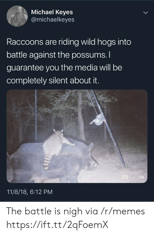 hogs: Michael Keyes  @michaelkeyes  Raccoons are riding wild hogs into  battle against the possums.  guarantee you the media will be  completely silent about it.  14  11/8/18, 6:12 PM The battle is nigh via /r/memes https://ift.tt/2qFoemX