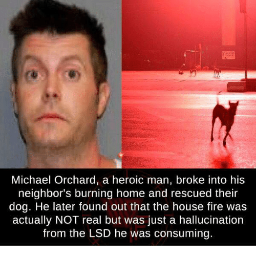 Michael Orchard a Heroic Man Broke Into His Neighbor's