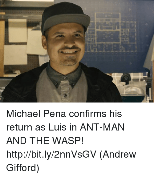 the wasp: Michael Pena confirms his return as Luis in ANT-MAN AND THE WASP! http://bit.ly/2nnVsGV  (Andrew Gifford)