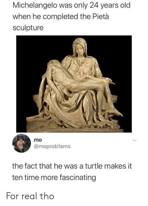 Turtle: Michelangelo was only 24 years old  when he completed the Pietà  sculpture  mo  @moproblems  the fact that he was a turtle makes it  ten time more fascinating For real tho