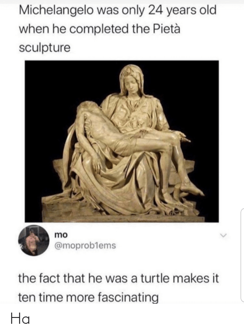 Turtle: Michelangelo was only 24 years old  when he completed the Pietà  sculpture  mo  @moproblems  the fact that he was a turtle makes it  ten time more fascinating Ha