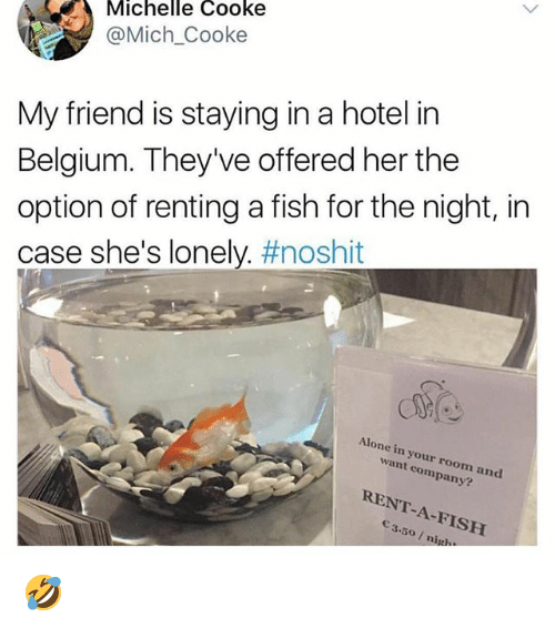 Cooke: Michelle Cooke  @Mich_Cooke  My friend is staying in a hotel in  Belgium. They've offered her the  option of renting a fish for the night, in  case she's lonely. #noshit  Alone in your room and  want company?  RENT-A-FISH  3.50/ nig. 🤣