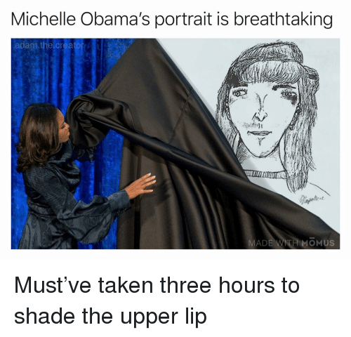 Memes, Shade, and Taken: Michelle Obama's portrait is breathtaking  adam, the creator  MADE  MOMUS Must've taken three hours to shade the upper lip