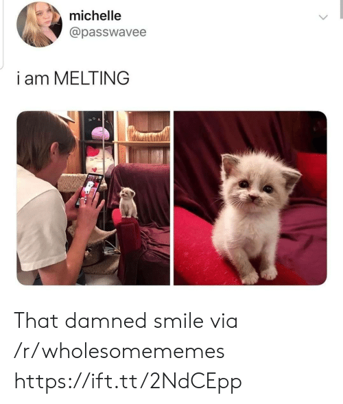 michelle: michelle  @passwavee  i am MELTING That damned smile via /r/wholesomememes https://ift.tt/2NdCEpp