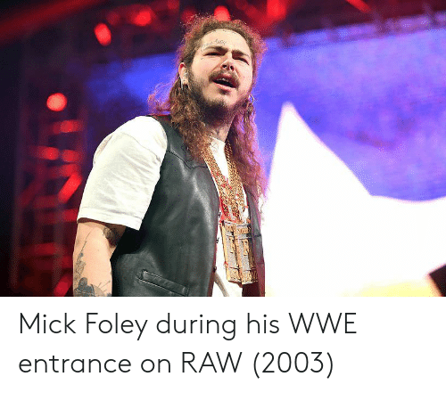 mick foley: Mick Foley during his WWE entrance on RAW (2003)