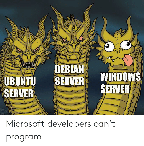 Developers: Microsoft developers can't program