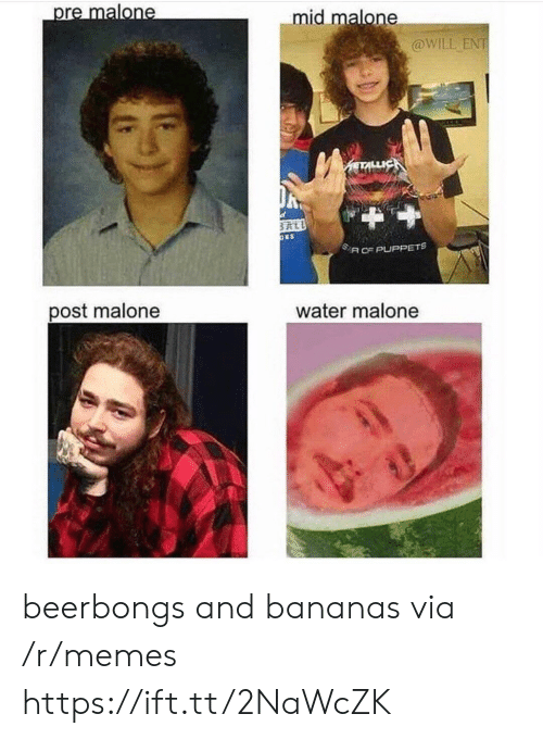 puppets: mid malone  @WILL ENT  SA CE PUPPETS  post malone  water malone beerbongs and bananas via /r/memes https://ift.tt/2NaWcZK