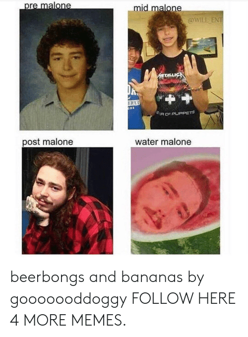 puppets: mid malone  @WILL ENT  SA CE PUPPETS  post malone  water malone beerbongs and bananas by gooooooddoggy FOLLOW HERE 4 MORE MEMES.