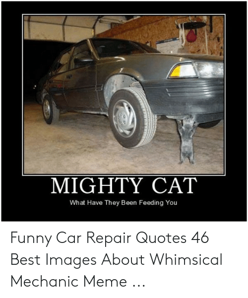 Car Repair Meme: MIGHTY CAT  What Have They Been Feeding You Funny Car Repair Quotes 46 Best Images About Whimsical Mechanic Meme ...