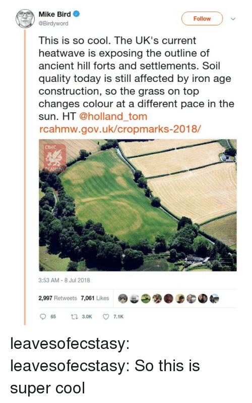 Uks: Mike Bird  Birdyword  This is so cool. The UK's current  heatwave is exposing the outline of  ancient hill forts and settlements. Soil  quality today is still affected by iron age  construction, so the grass on top  changes colour at a different pace in the  sun. HT @holland_tom  rcahmw.gov.uk/cropmarks-2018/  Follow  CBHC  3:53 AM-8 Jul 2018  2,997 Retweets 7,061 Likes9 leavesofecstasy:  leavesofecstasy:  So this is super cool