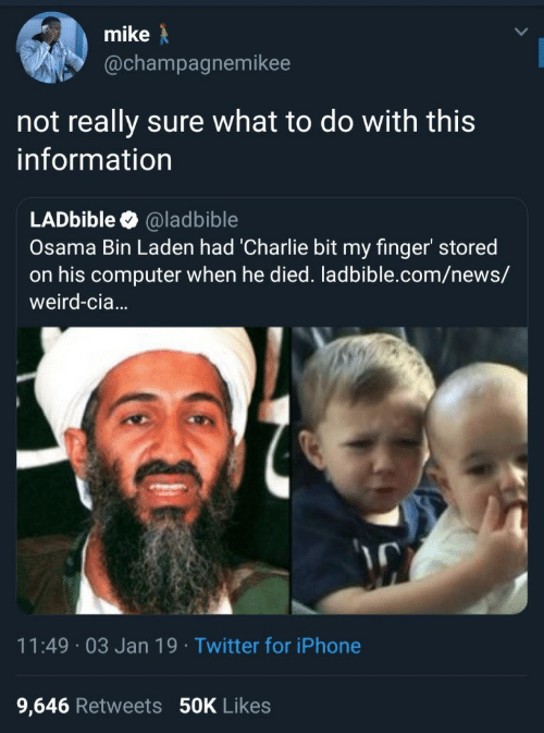 osama: mike  @champagnemikee  not really sure what to do with this  information  LADbible @ladbible  Osama Bin Laden had 'Charlie bit my finger' stored  on his computer when he died. ladbible.com/news/  weird-cia...  11:49 03 Jan 19 Twitter for iPhone  9,646 Retweets 50K Likes