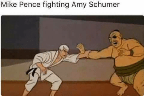 Amy Schumer, Memes, and 🤖: Mike Pence fighting Amy Schumer