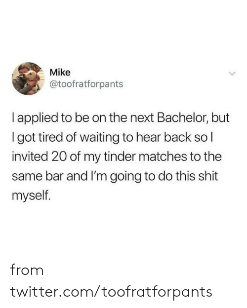 Bachelor: Mike  @toofratforpants  I applied to be on the next Bachelor, but  Igot tired of waiting to hear back sol  invited 20 of my tinder matches to the  same bar and I'm going to do this shit  myself. from twitter.com/toofratforpants