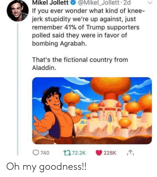Agrabah: Mikel Jollett@Mikel_Jollett 2d  If you ever wonder what kind of knee-  jerk stupidity we're up against, just  remember 41% of Trump supporters  polled said they were in favor of  bombing Agrabah  That's the fictional country from  Aladdin.  9740  228K Oh my goodness!!