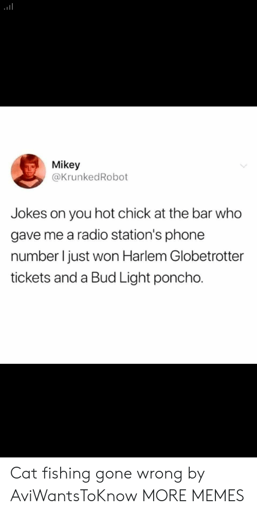 Phone Number: Mikey  @KrunkedRobot  you hot chick at the bar who  gave me a radio station's phone  number I just won Harlem Globetrotter  tickets and a Bud Light poncho. Cat fishing gone wrong by AviWantsToKnow MORE MEMES