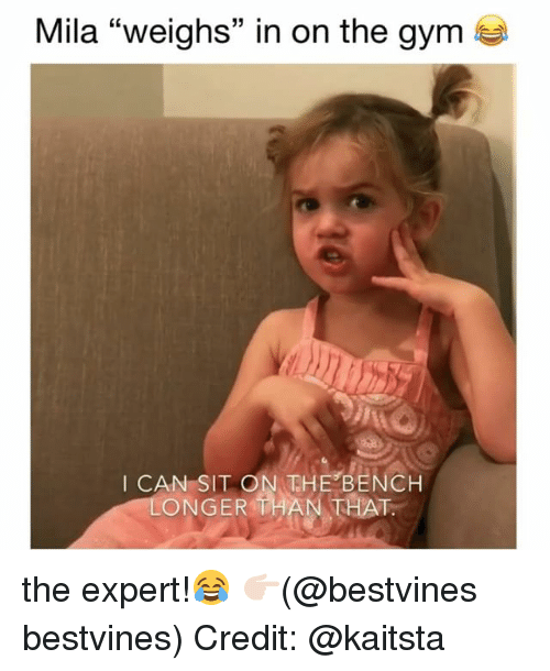 "Gym, Memes, and 🤖: Mila ""weighs"" in on the gym  I CAN SIT ON THE BENCH  ONGER THAN THAT the expert!😂 👉🏻(@bestvines bestvines) Credit: @kaitsta"
