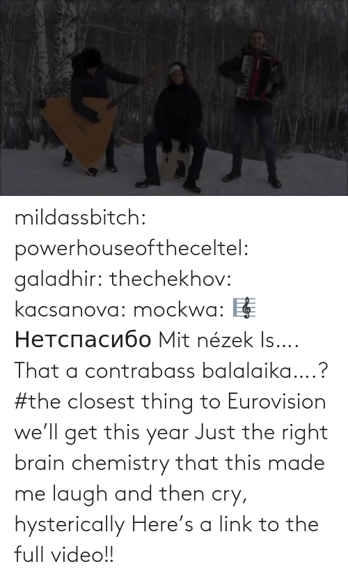 app: mildassbitch: powerhouseoftheceltel:  galadhir:  thechekhov:  kacsanova:  mockwa:    🎼  Нетспасибо  Mit nézek    Is…. That a contrabass balalaika….?    #the closest thing to Eurovision we'll get this year    Just the right brain chemistry that this made me laugh and then cry, hysterically    Here's a link to the full video!!