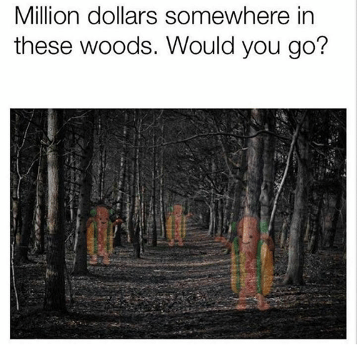 You, Woods, and Somewhere: Million dollars somewhere in  these woods. Would you go?