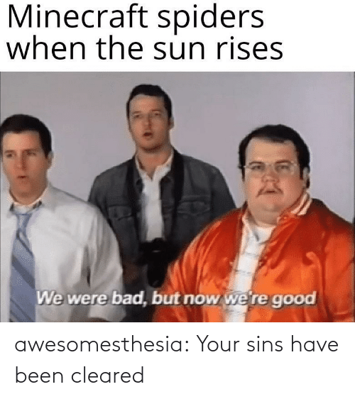 Spiders: Minecraft spiders  when the sun rises  We were bad, but now we're good awesomesthesia:  Your sins have been cleared