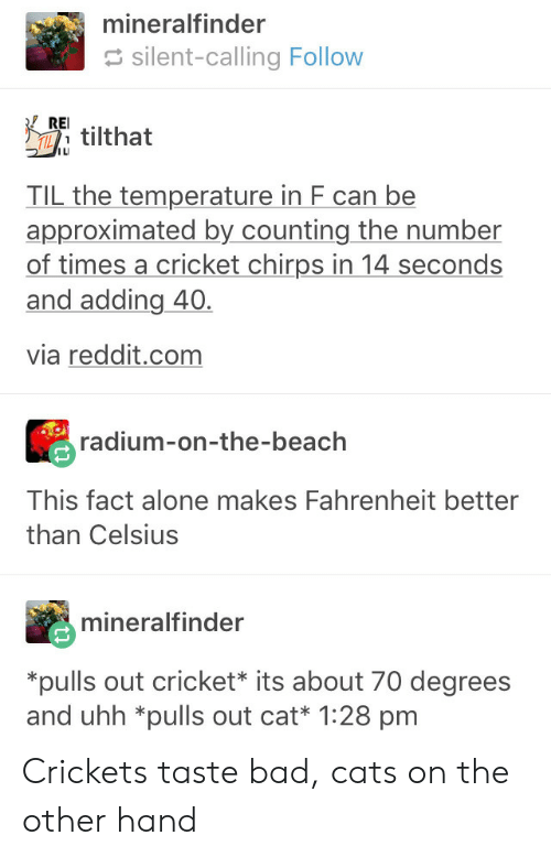 crickets: mineralfinder  silent-calling Follow  Etilthat  ILI  TIL the temperature in F can be  approximated by counting the number  of times a cricket chirps in 14 seconds  and adding 40.  via reddit.com  radium-on-the-beach  This fact alone makes Fahrenheit better  than Celsius  mineralfinder  pulls out cricket* its about 70 degrees  and uhh *pulls out cat* 1:28 pm Crickets taste bad, cats on the other hand