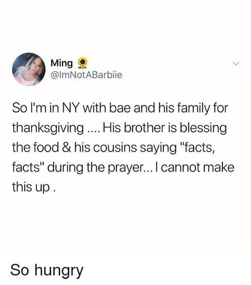 "Bae, Facts, and Family: Ming  @lmNotABarbiie  So I'm in NY with bae and his family for  thanksgiving His brother is blessing  the food & his cousins saying ""facts,  facts"" during the prayer... I cannot make  this up So hungry"