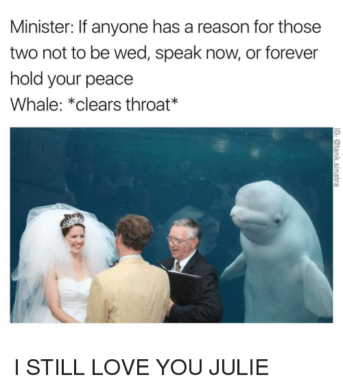 Funny, Forever, and Wedding: Minister: lf anyone has a reason for those  two not to be wed, speak now, or forever  hold your peace  Whale: *clears throat I STILL LOVE YOU JULIE