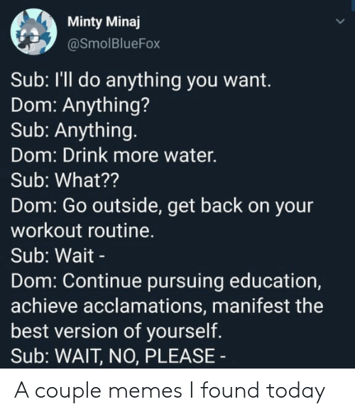 minaj: Minty Minaj  @SmolBlueFox  Sub: I'll do anything you want.  Dom: Anything?  Sub: Anything.  Dom: Drink more water.  Sub: What??  Dom: Go outside, get back on your  workout routine.  Sub: Wait -  Dom: Continue pursuing education,  achieve acclamations, manifest the  best version of yourself.  Sub: WAIT, NO, PLEASE A couple memes I found today