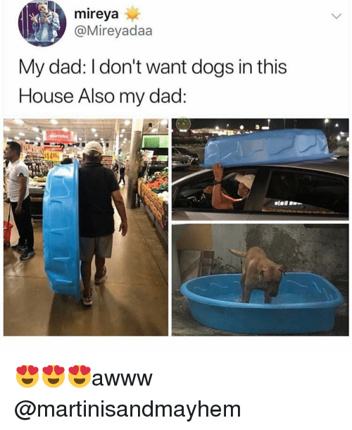 Dad, Dogs, and Funny: mireya  @Mireyadaa  My dad: I don't want dogs in this  House Also my dad  RZ 😍😍😍awww @martinisandmayhem