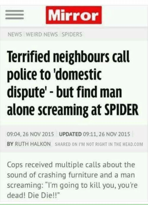 "Im Going To Kill You: Mirror  NEWS WEIRD NEWS SPIDERS  Terrified neighbours call  police to domestic  dispute but find man  alone screaming at SPIDER  09:04, 26 Nov 2015 UPDATED 09:11, 26 NOV 2015  BY RUTH HALKON SHARED ON I M NOT RIGHT IN THE HEAD.COM  Cops received multiple calls about the  sound of crashing furniture and a man  screaming: ""I'm going to kill you, you're  dead! Die Die!!"""