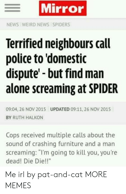 "Im Going To Kill You: Mirror  NEWS WEIRD NEWS SPIDERS  Terrified neighbours call  police to 'domestic  dispute'-but find man  alone screaming at SPIDER  09:04, 26 NOV 2015  UPDATED 09:11, 26 NOV 2015  BY RUTH HALKON  Cops received multiple calls about the  sound of crashing furniture and a man  screaming: ""I'm going to kill you, you're  dead! Die Die!!"" Me irl by pat-and-cat MORE MEMES"