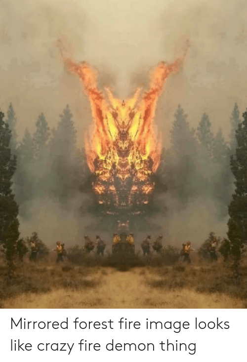 Forest Fire: Mirrored forest fire image looks like crazy fire demon thing