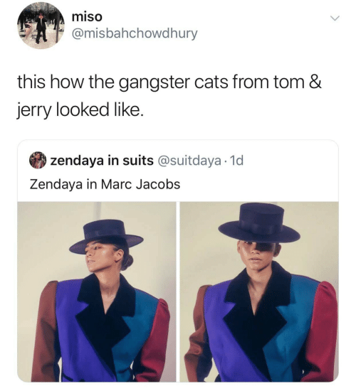 gangster: miso  @misbahchowdhury  this how the gangster cats from tom &  jerry looked like  zendaya in suits @suitdaya 1d  Zendaya in Marc Jacobs