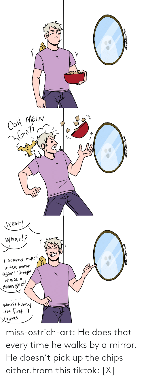 chips: miss-ostrich-art:  He does that every time he walks by a mirror. He doesn't pick up the chips either.From this tiktok: [X]