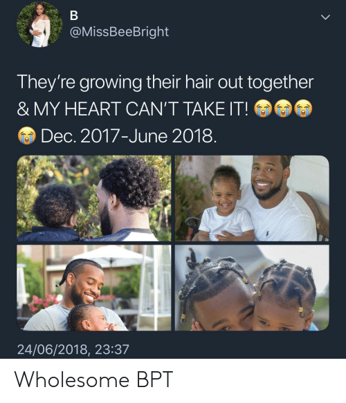 Cant Take It: @MissBeeBright  They're growing their hair out together  & MY HEART CAN'T TAKE IT!  Dec. 2017-June 2018  24/06/2018, 23:3.7 Wholesome BPT