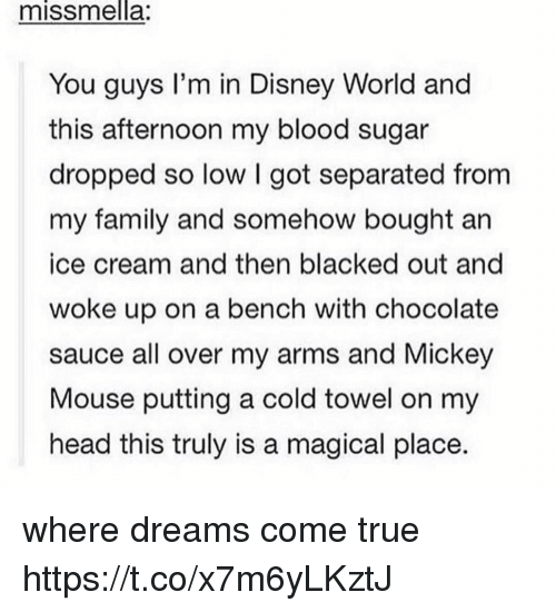 Disney, Disney World, and Family: missmnella:  You guys I'm in Disney World and  this afternoon my blood sugar  dropped so low I got separated from  my family and somehow bought an  ice cream and then blacked out and  woke up on a bench with chocolate  sauce all over my arms and Mickey  Mouse putting a cold towel on my  head this truly is a magical place. where dreams come true https://t.co/x7m6yLKztJ