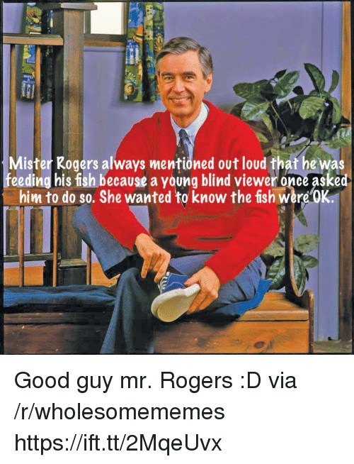 Fish, Good, and Mr Rogers: Mister Rogers always mentioned out loud that he was  feeding his fish beceause a young blind viewer once asked  him to do so. She wanted to know the fish were'OK. Good guy mr. Rogers :D via /r/wholesomememes https://ift.tt/2MqeUvx