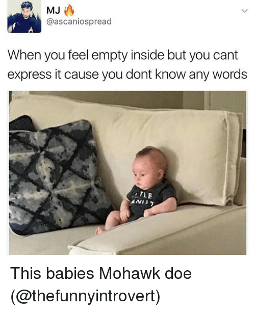 Doe, Funny, and Express: MJ  @ascaniospread  When you feel empty inside but you cant  express it cause you dont know any words  TLE This babies Mohawk doe (@thefunnyintrovert)