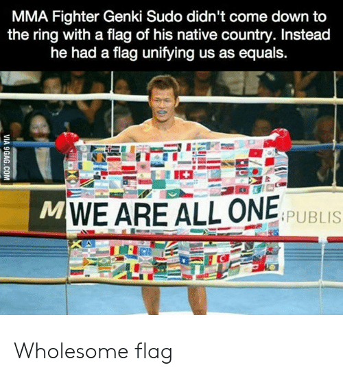 The Ring: MMA Fighter Genki Sudo didn't come down to  the ring with a flag of his native country. Instead  he had a flag unifying us as equals.  MWE ARE ALL ONE  PUBLIS  VIA 9GAG.COM Wholesome flag