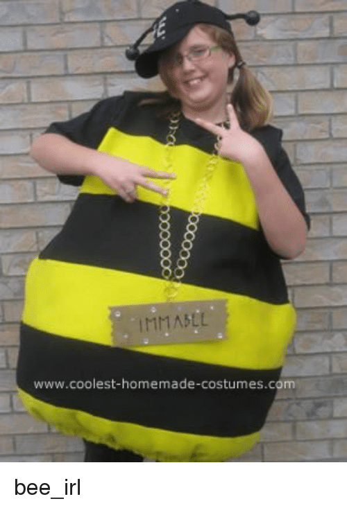 Bee_irl and Bees MMASLL .coolest-homemade-costumes.com bee_irl  sc 1 st  Sizzle & MMASLL Wwwcoolest-Homemade-Costumescom Bee_irl | Bee_irl Meme on SIZZLE