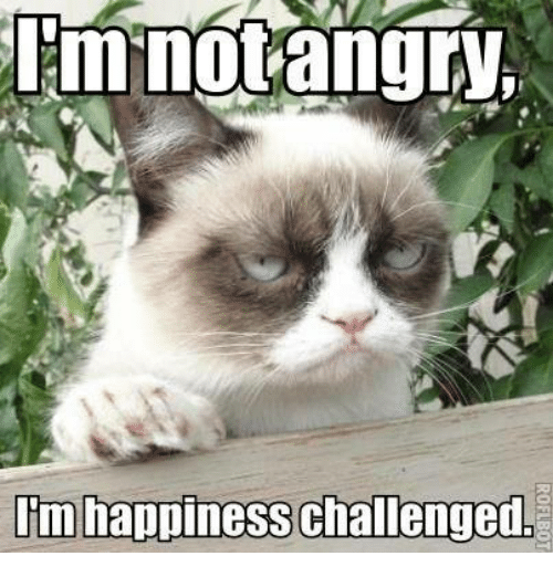 Memes, Happy, and Happiness: mnotangry  I'm happiness challenged,