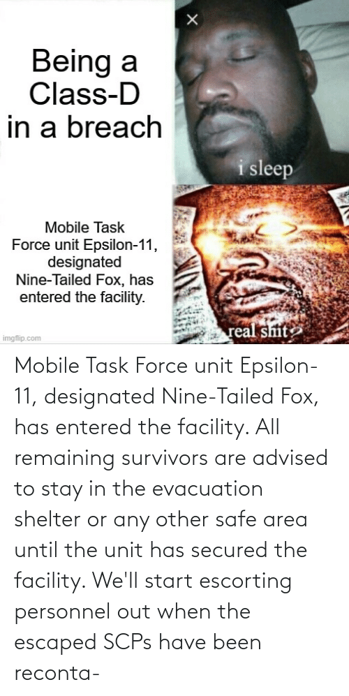 Area: Mobile Task Force unit Epsilon-11, designated Nine-Tailed Fox, has entered the facility. All remaining survivors are advised to stay in the evacuation shelter or any other safe area until the unit has secured the facility. We'll start escorting personnel out when the escaped SCPs have been reconta-