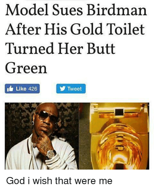 Birdman, Butt, and Models: Model Sues Birdman  After His Gold Toilet  Turned Her Butt  Green  Like 426  Tweet God i wish that were me