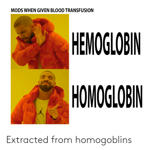 blood transfusion: MODS WHEN GIVEN BLOOD TRANSFUSION  HEMOGLOBIN  HOMOGLOBIN Extracted from homogoblins
